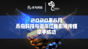 2020年6月禾鸟科技与湖南红兔影视传媒牵手成功